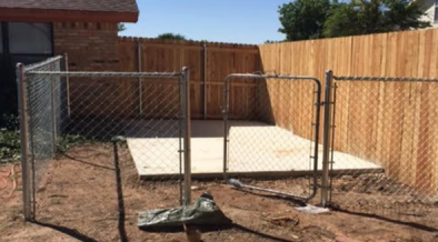 dog proof garden shed